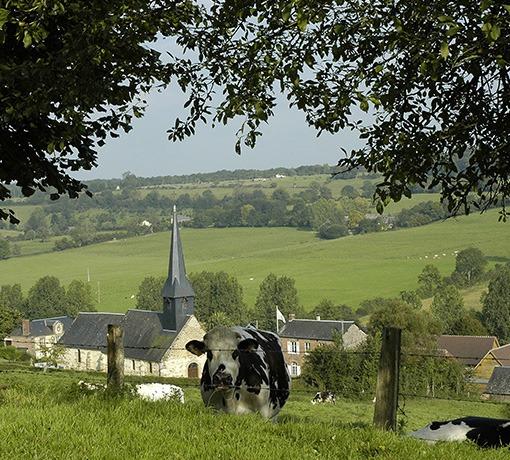 Village de Camembert © D. Commenchal