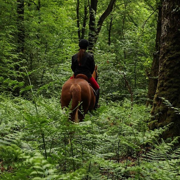 Balade à cheval © Itinéra Magica