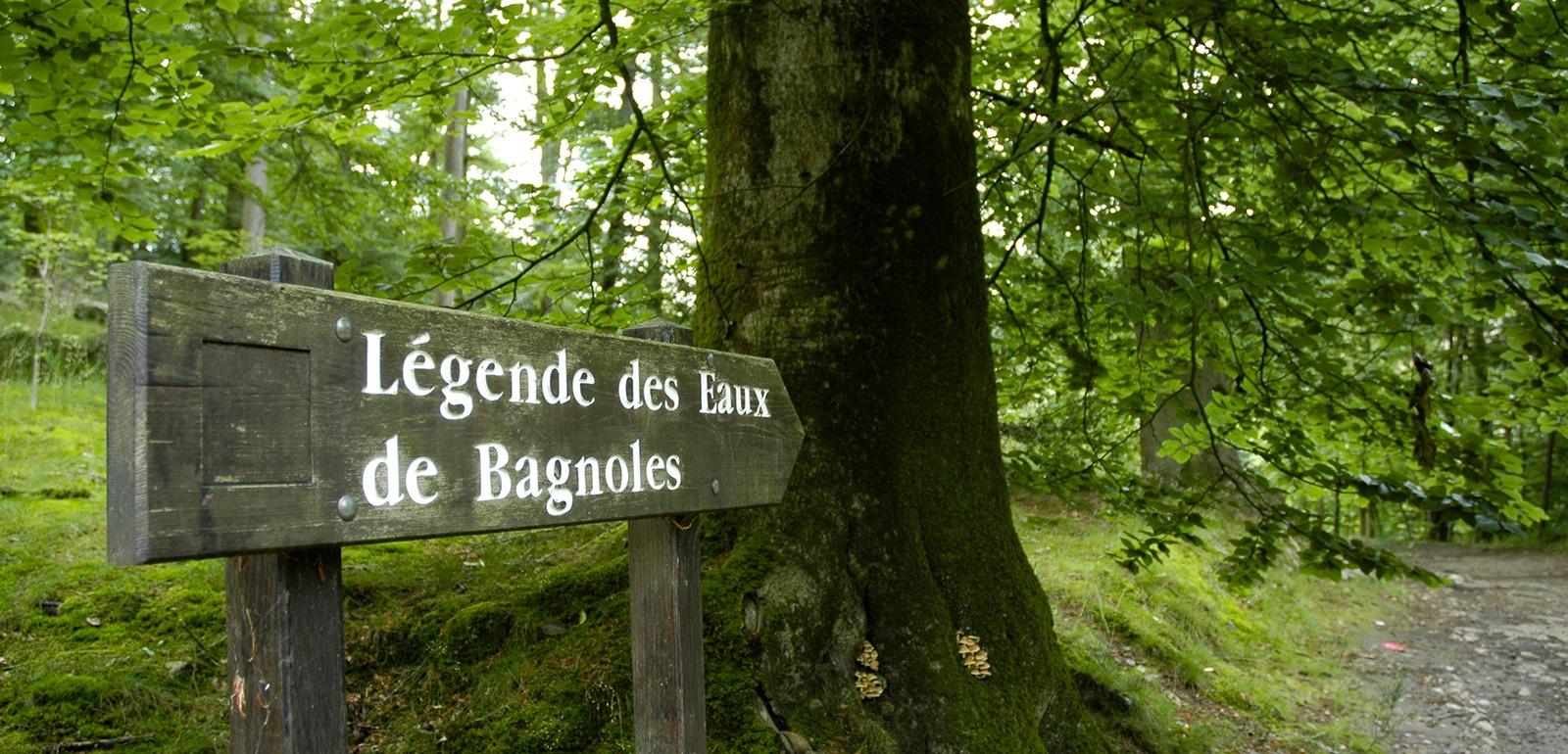 Bagnoles de l'Orne © D. Commenchal