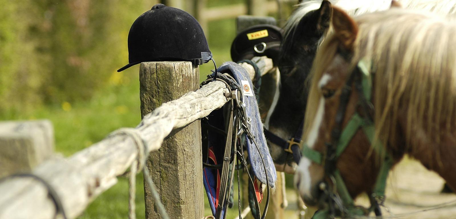 Centre d'équitation © D. Commenchal